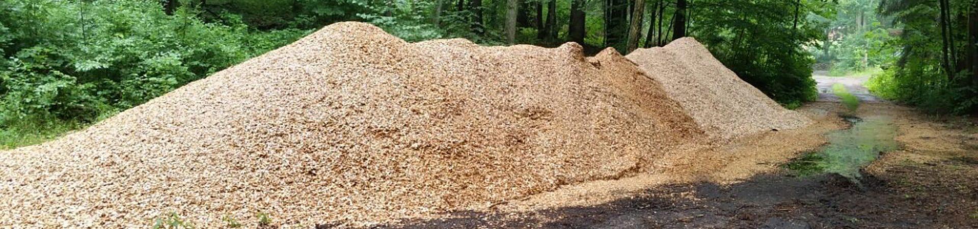Effektive Verwertung von beforsteten Waldholz